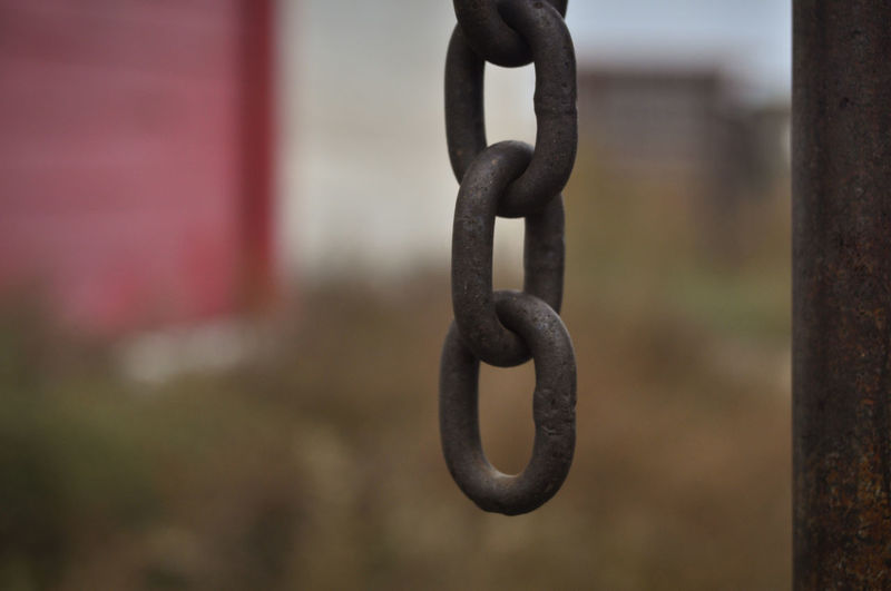 Metal Chain Focus On Foreground Selective Focus Iron - Metal Gate Fence Farm Ranch Barn Livestock Security Locked Link Protection Still Life Hanging Strength Close-up Durability No People Safety