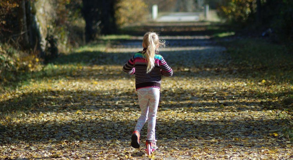 Allee Automne Chemin Children Only Day Doubs Feuilles Full Length Nature One Girl Only Outdoors People Promenade