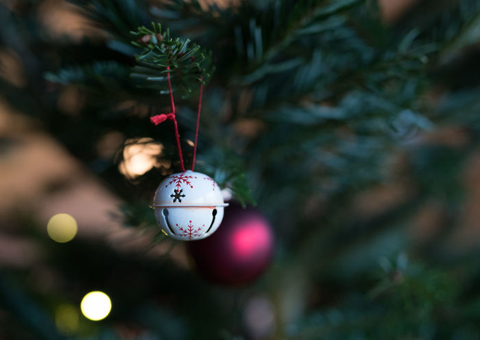 christmas decoration | focus on foreground Bauble Celebration Celebration Event Christmas Christmas Decoration Christmas Ornament Christmas Tree Close-up Focus On Foreground Hanging Holiday - Event No People Tradition Tree