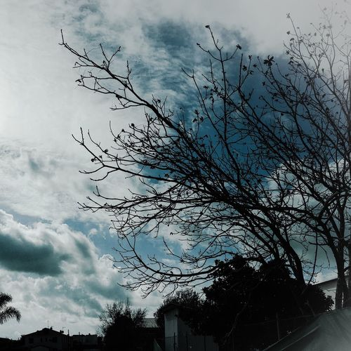 Tree Clouds And Sky Nature Photography Beautiful Blue Sky SouthCyprus Island