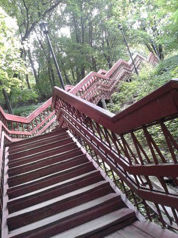 Kolomenskoye Stairs Stairways Nature On Your Doorstep Nature