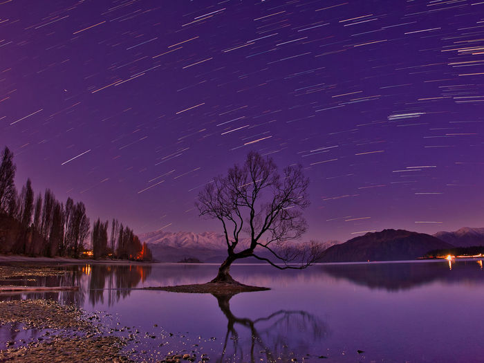 Bare tree in lake against sky with star trail at dusk