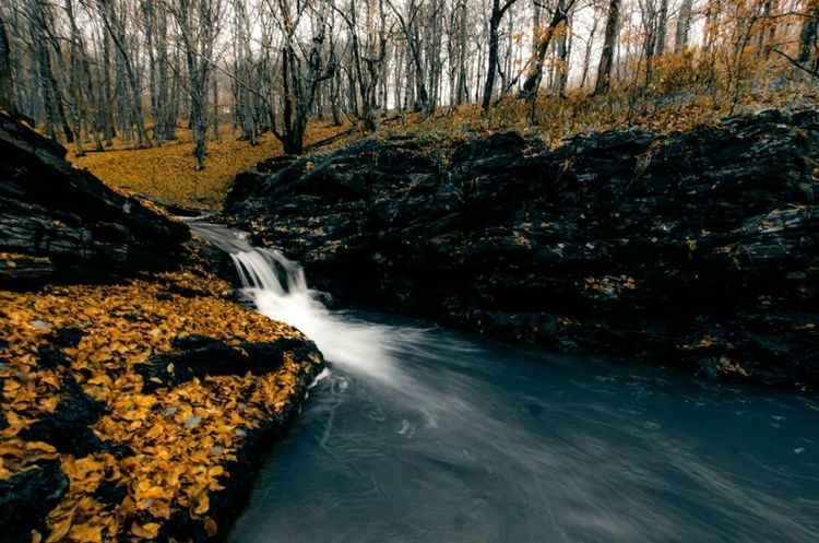 Check This Out Naturelovers Autumn Colors Travelling