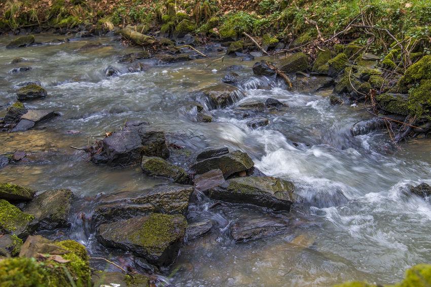 Bachlauf BACH Creek Nature Nature Photography Naturfotografie Natur Steine Steine Und Wasser Stones Stones & Water Wasser Water