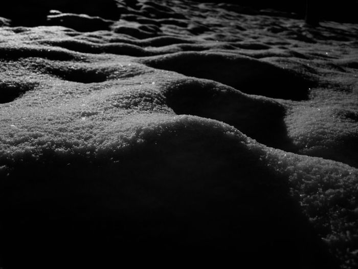 Black And White Cold Cold Temperature Frozen It's Cold Outside Monochrome Nature Snow Snow Covered Snowcapped White The Great Outdoors With Adobe