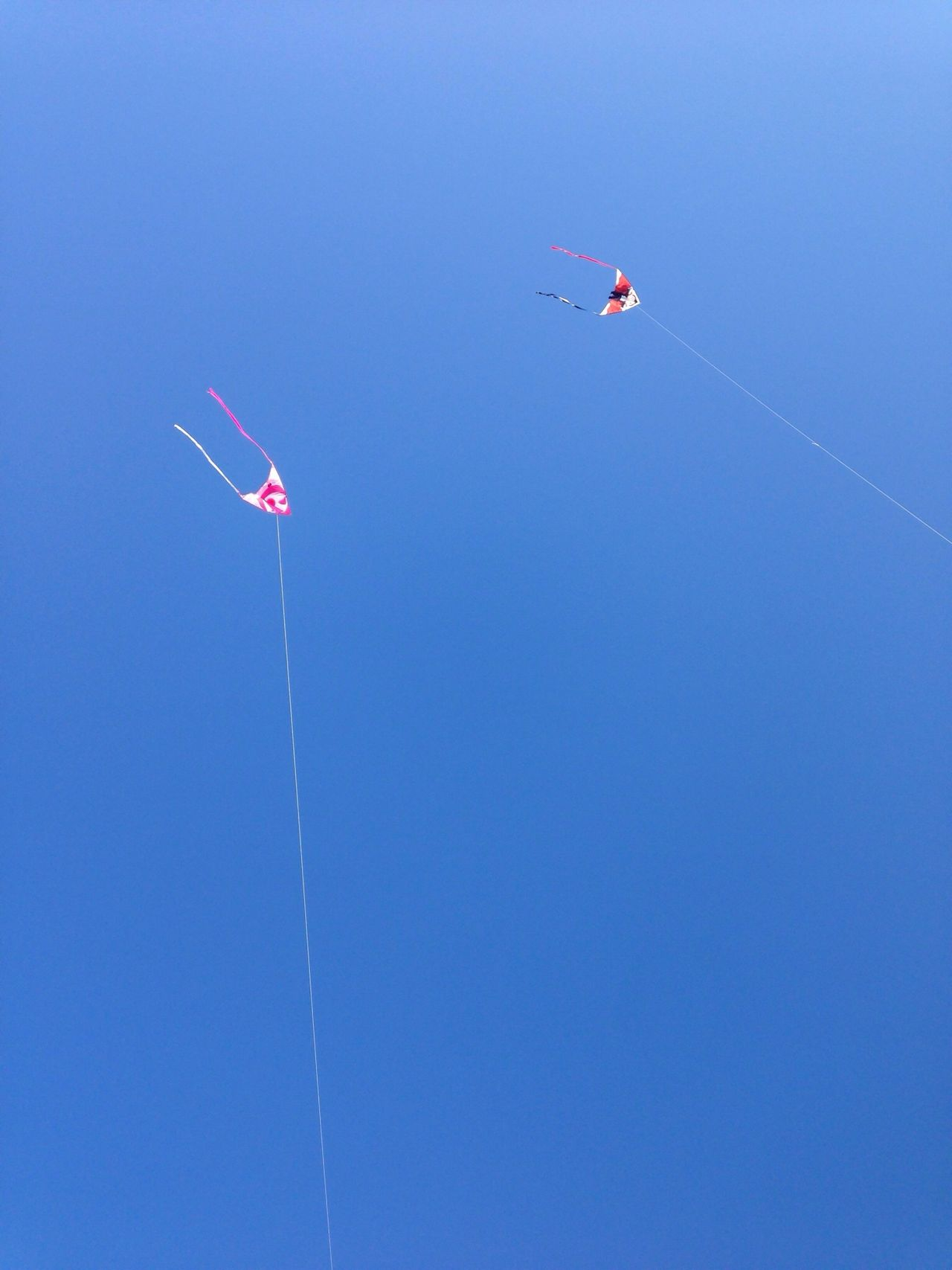 Low angle view of kites against clear blue sky