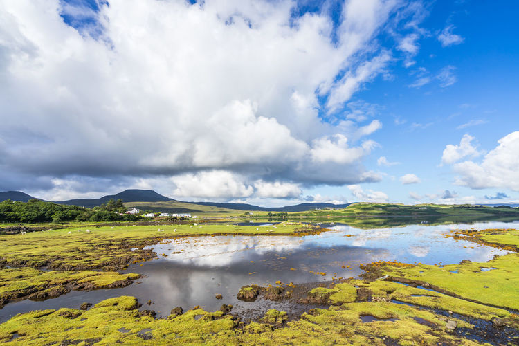 Isle of Skye landscape, Scotland Great Britain Scotland Beauty In Nature Cloud - Sky Day Environment Green Color Idyllic Isle Of Skye Lake Land Landscape Nature No People Non-urban Scene Outdoors Reflection Scenics - Nature Sky Swamp Tranquil Scene Tranquility Uk Water