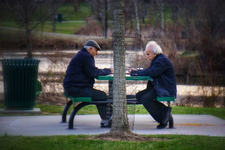 At the park - tell me, did I see Albert Einstein or Mark Twain? Alberteinstein Marktwain Men At The Park Playing Playing Games Playing Cards RePicture Friendship