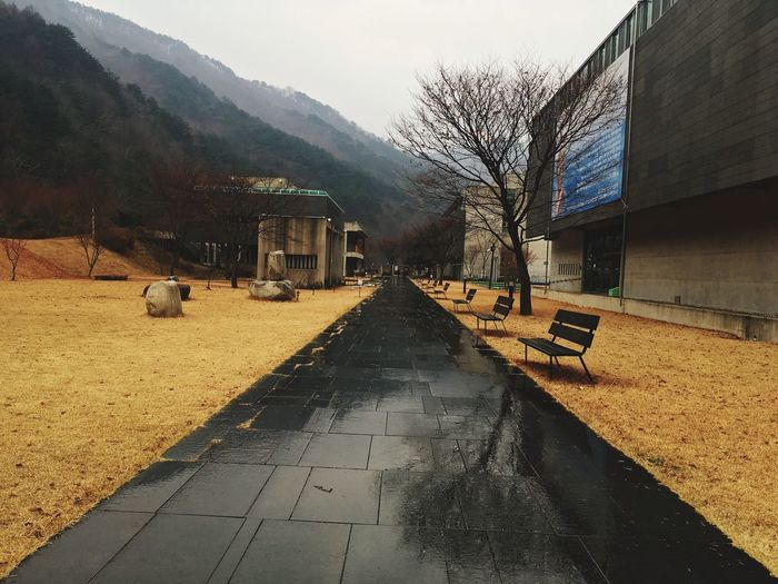 EyeEm Selects Rain Wet Road