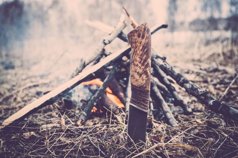 Close-Up Of Bonfire