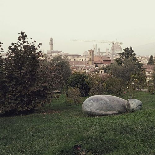 Nature Outdoors Sculpture Cityscape Florence Italy