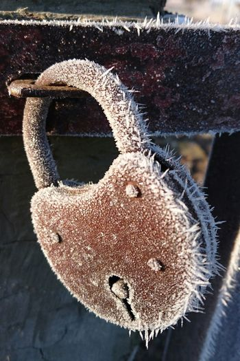Purist No Edit No Filter Locked Locked Together Until Rust Tear Us Apart Rusty Rustic Rustporn  Winter_collection Winterfuckyou Heartbeat Moments Heartwarming