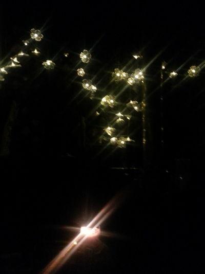 Illuminated Celebration Holiday - Event Lighting Equipment