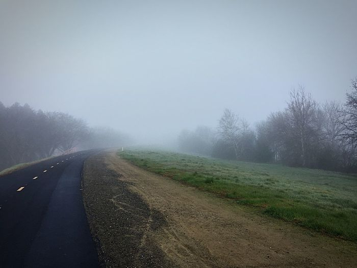 The Way Forward Road Fog Weather Diminishing Perspective Landscape Nature