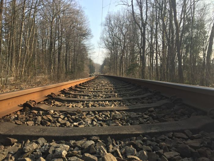 Track Rail Transportation Railroad Track The Way Forward Direction Plant Transportation Diminishing Perspective Stone - Object Nature No People Land vanishing point Day Straight