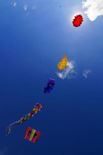 Kites Bintulu Borneo Kite Festival Colours Kites String Of Pearls In The Sky Flying Multi Colored Sky