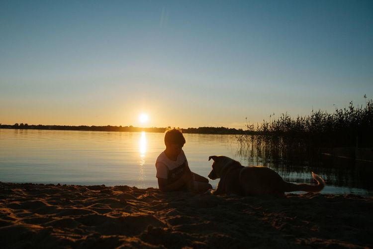 Dog sitting on beach during sunset