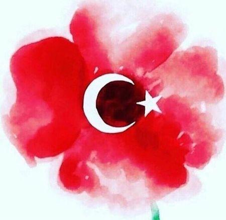 Turkey Istanbul Stopterrorism Prayforistanbul