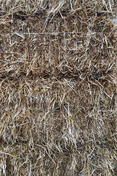 Odessa,Ukraine Texture And Surfaces Textures And Surfaces Agriculture Backgrounds Close-up Day Full Frame Hay Hay Bale Nature No People Outdoors Texture Texture In Nature Textured