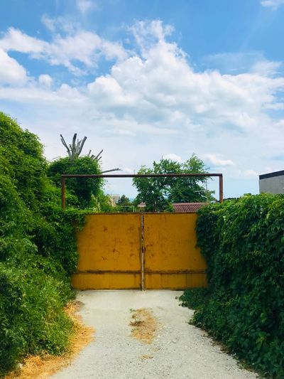 Yellow gates Plant Cloud - Sky Sky Tree Nature Growth Green Color Day Architecture Outdoors Sunlight Building Exterior Fence Yellow Built Structure No People Building Street Field Park