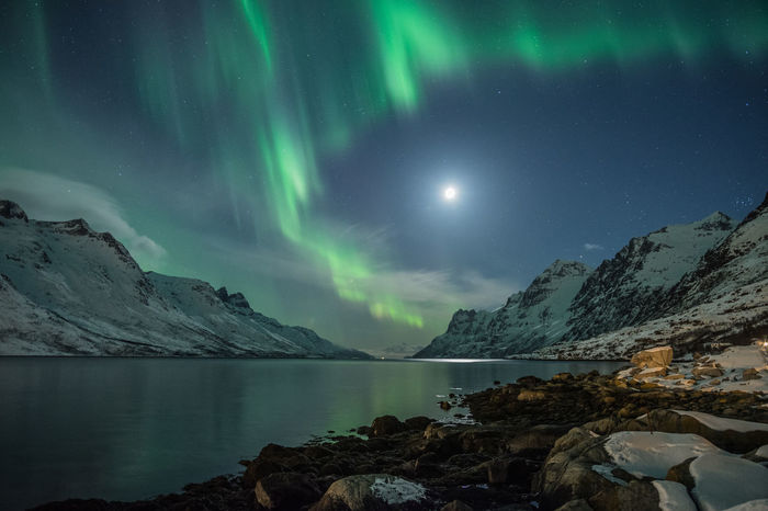 Northern lights over Ersfjord Aurora Borealis Northern Lights Norway Astronomy Beauty In Nature Eyem Best Shots Fjord Galaxy Green Color Idyllic Lake Long Exposure Moonlight Mountain Nature Night No People Scenics - Nature Sky Snowcapped Mountain Space Star - Space Tranquil Scene Tranquility Water