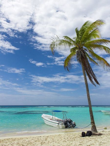 Palm Tree Sea Beach Cloud - Sky Sky Nature Water Beauty In Nature Tree Horizon Over Water Nautical Vessel Caribbean Sea Deep Blue Turquoise Caribbean Idyllic Scenics Outdoors No People Tranquil Scene Sand Day