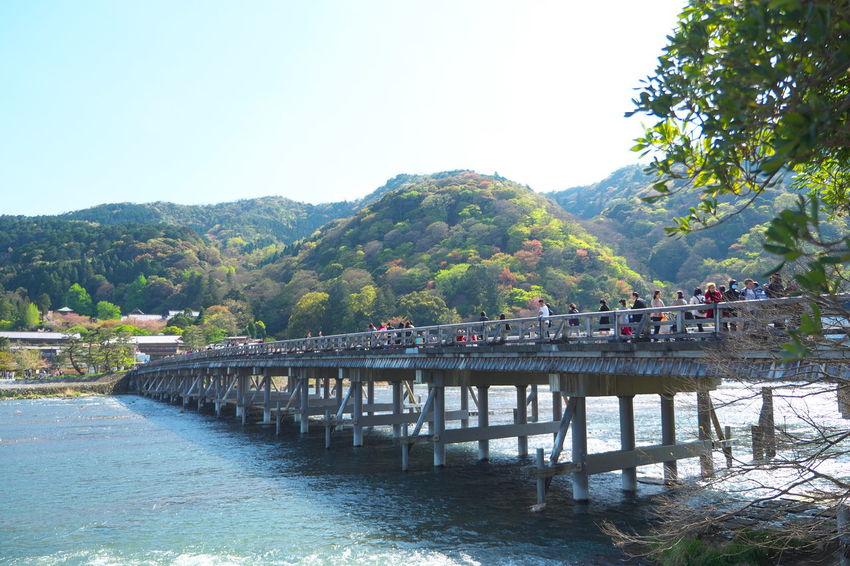 Arashiyama Blue Blue Sky Bridge River Sky Togetsukyo Tree 渡月橋