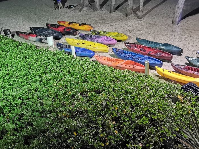 High angle view of multi colored umbrellas on field