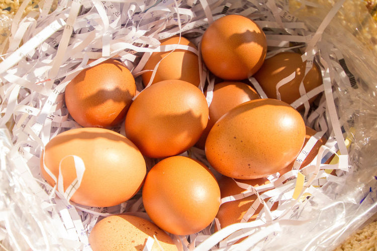 Eggs time Animal Egg Backgrounds Brown Close-up Day Egg Egg Carton Egg Yolk Eggshell Food Food And Drink Fragility Freshness Healthy Eating Indoors  No People Raw Food