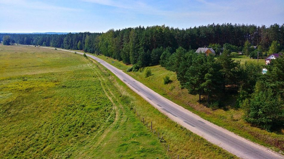 Road in Dzukija ethnographic region, Lithuania. Road Dzukija Lithuania WelcometoLithuania Travel Trees Nature Lt Tree Rural Scene Agriculture Sky Landscape Grass Farmland