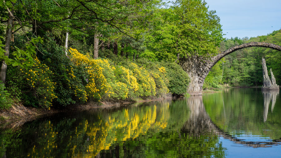 Beauty In Nature Connection Green Color Growth Kromlau Lake Landscapes With WhiteWall Nature Reflection River Scenics Standing Water Tranquil Scene Tranquility Tree Water Waterfront