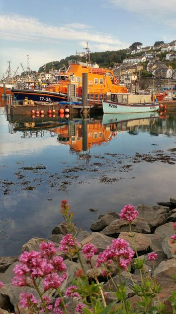 Reflection Water Outdoors Flower No People That's Me Eye4photography  Eye4photography  From My Point Of View Eye4photography  Eyemphotography Newlyn Fishing Cornwall Uk Taking Photos Tranquil Scene Lifeboat Lifeboat RNLI Ivan_ellen