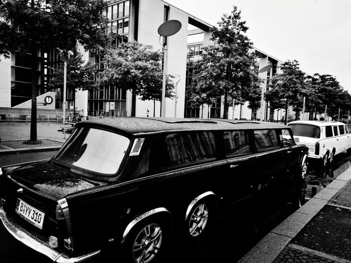 the cars World Cars Feelings Black And White Blackandwhite Photography Limousine Limousines Berlin Photography Berliner Ansichten Oktober 2016 Life Urban City Citylife Carsofeyeem Tree Sky Architecture Building Exterior Land Vehicle Vehicle Bus Motor Scooter Moving Side-view Mirror Vintage Car Parking Stationary Car Vehicle Seat