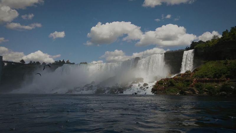 Niagara Falls Niagrafalls Beauty Beauty In Nature Beautiful Nature Beautiful Day Beautiful Place Nature Nature Photography Naturelovers Nature Beauty Sunshine ☀