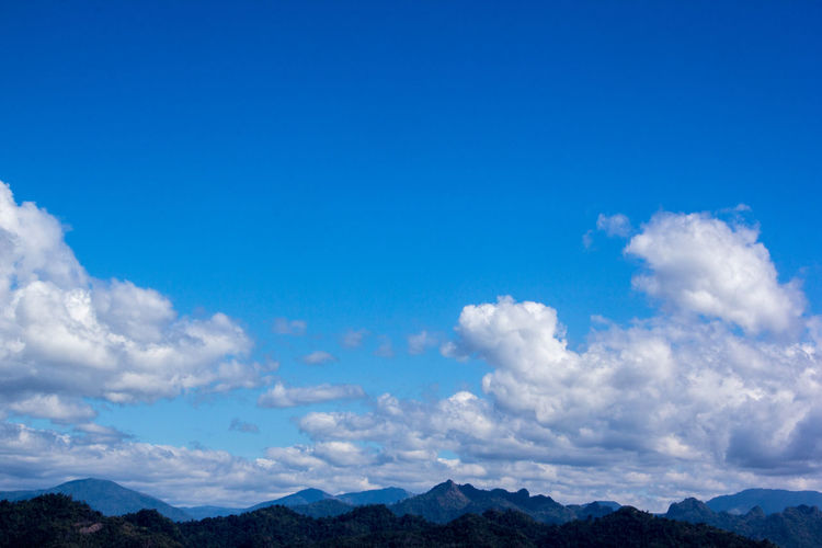 Bule sky Beauty