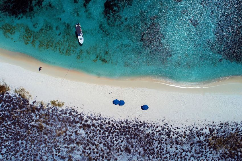 Aerial view of island and beach in Los Roques, Venezuela Sea Sport Water Land Nature Leisure Activity Aquatic Sport Sand Adventure One Person Beach Scenics - Nature Day Mid-air Underwater Beauty In Nature Blue Tranquility Outdoors UnderSea Pebble Los Roques Madrisqui Caribe Caribbean Caribbean Life Caribbean Island Francisqui Crasqui Carenero's Beach Cayo De Agua Venezuela