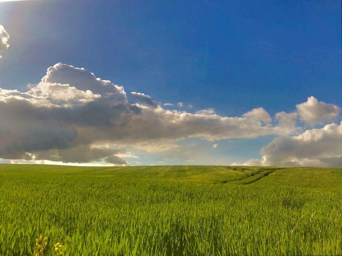 Sky Cloud - Sky Beauty In Nature Field Landscape Scenics - Nature Tranquil Scene
