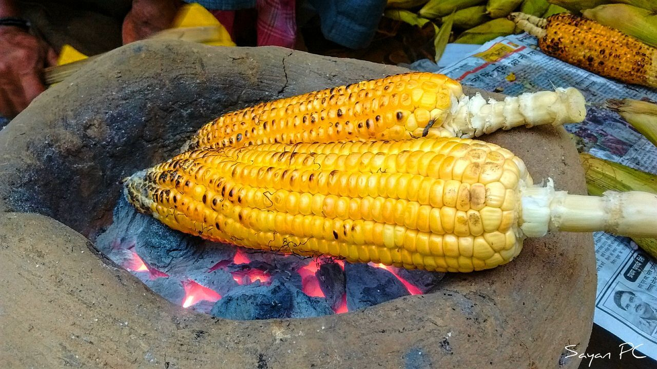 Close-Up Of Corn Cobs