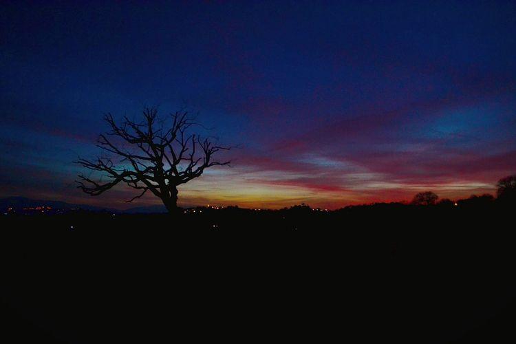 skyline-