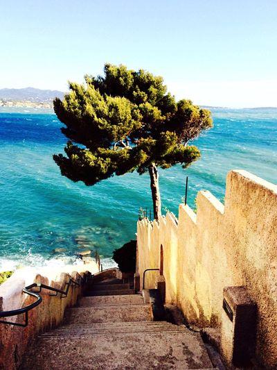 Sanary Sur Mer Seaside Stairs