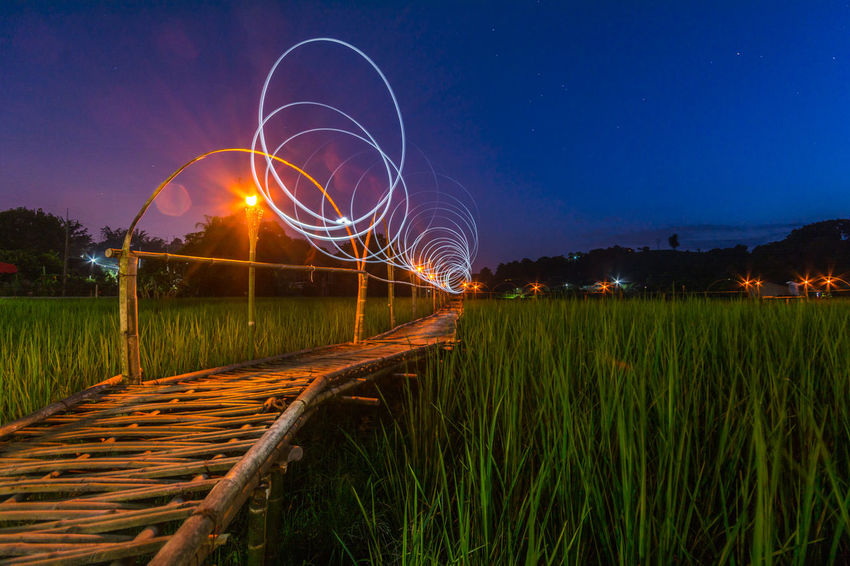 Bamboo Bridge in Paddy Field, Chiang Rai, Thailand. Bamboo Bridge Bamboo Bridge In Paddy Field, Chiang Rai, Thailand. Blue Curve Electric Light Field Glowing Grass Illuminated Landscape Light Beam Light Painting Lit Long Nature Night Non-urban Scene Outdoors Paddy Field Scenics Sky Surface Level Tranquil Scene Tranquility
