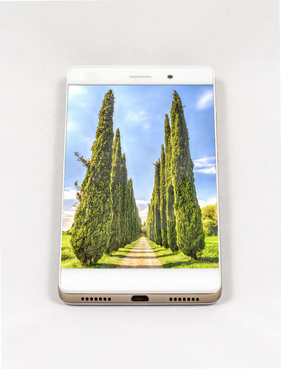 Modern smartphone with full screen picture of cypresses, Italy. Concept for travel smartphone photography. All images in this composition are made by me and separately available on my portfolio Cloud - Sky Communication Connection Day Glass - Material Grass Green Color Growth Indoors  Nature No People Plant Screen Sky Technology Transparent Tree Window Wireless Technology