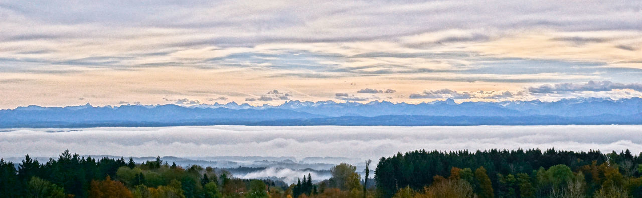 Lake Constance, covered by fog. Alps Autumn Autumn Colors Autumn Leaves Beauty In Nature Cloud Cloud - Sky Fog Foggy Morning Lake Constance Nature Tranquil Scene Forest No People Scenics Mountain Landscape Sky Tranquility Tree Outdoors Day