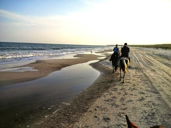 Fresh On Eyeem  The Great Outdoors With Adobe Waters Edge Vacation Beach Horses Horse Riding Horseback Riding Sand Ocean Oceanside Cape San Blas Florida Forgotten Coast Surf Waves Waves Rolling In My Favorite Photo First Picture Sold this is the first picture I sold. proud The Great Outdoors - 2016 EyeEm Awards Horseback Riding On The Beach Horseback Horsebackriding  Horseriding The Essence Of Summer