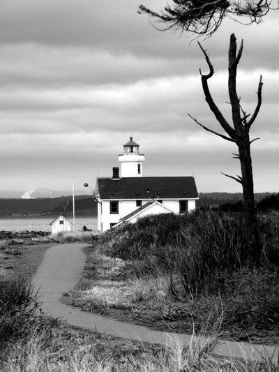 Bare tree and lighthouse on grassy field against cloudy sky