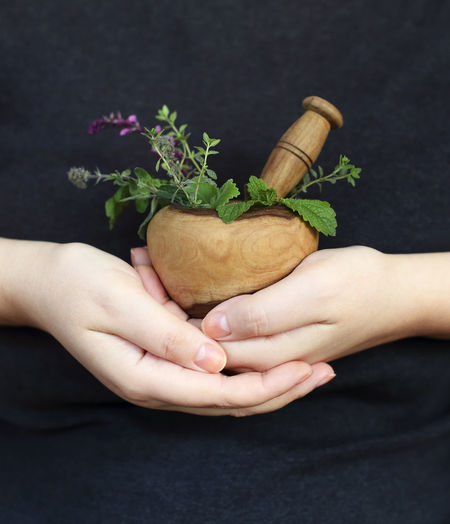 Close-up of hand holding flower pot