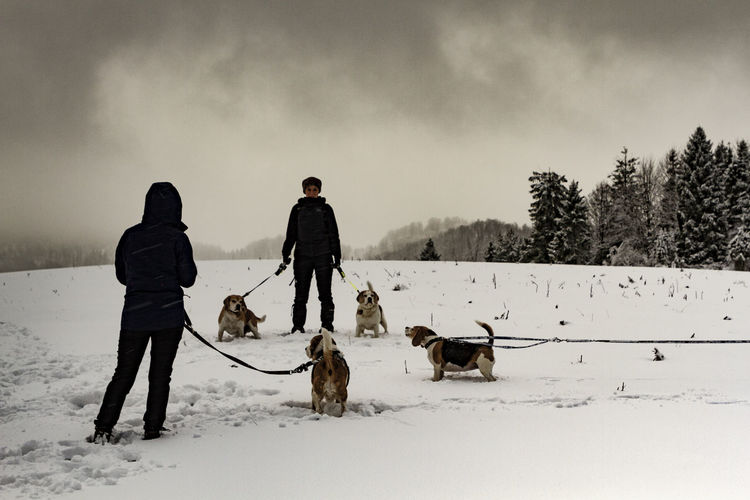 few edited shots from the last trip to the mountains in 2018 Jaworki, Wysoka, Durbaszka, Pieniny Polish Mountains. Winter Snow Cold Temperature Mammal Real People Pets Domestic Domestic Animals Land Men Field Nature Vertebrate One Animal Sky Dog Canine Warm Clothing Outdoors