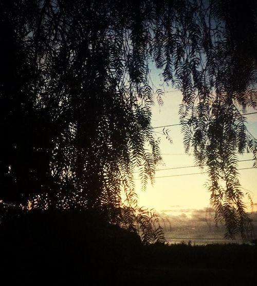 Simply said a beautiful maui sun set Sunset Lovers Maui Hawaii What I Live For