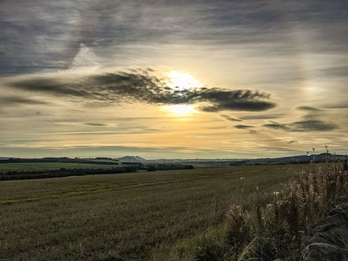 Sunset Sky Landscape Field Beauty In Nature Nature Scenics Tranquil Scene Cloud - Sky Agriculture Rural Scene Tranquility Sun Growth Idyllic Outdoors No People Grass Day