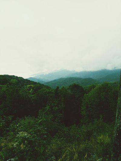 The Smoky Mountains! Smokey Mountains Travel Mountains